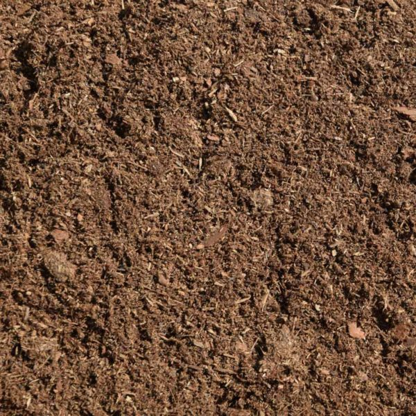 particolare del substrato per piante acidofile