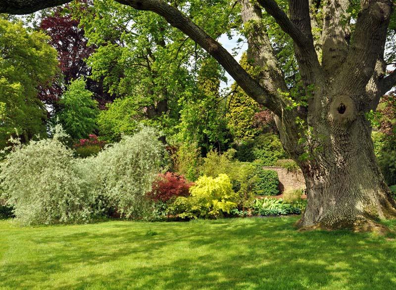 prodotti-paesaggistica-gardening